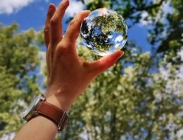 Perché è importante la transizione ecologica per le organizzazioni?